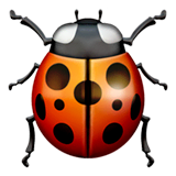 lady-beetle-apple.png